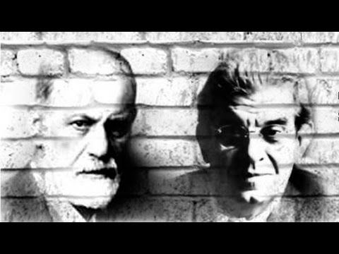 Lecciones de introducción al Psicoanalisis  #psicologia #psicoanalisis