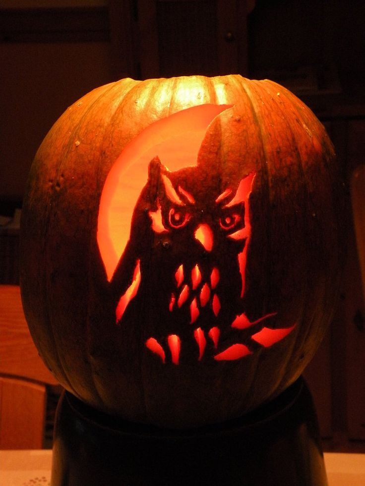 Moon and owl halloween pinterest pumpkin search