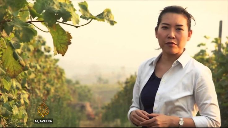 Myanmar's wine industry is thriving - YouTube