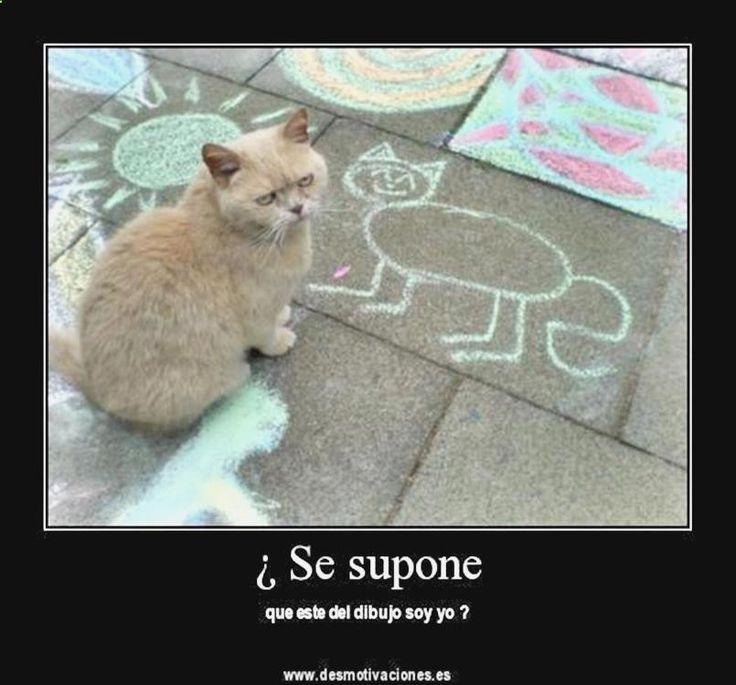 ^o^ Descubre lo mejor en chistes rumanos buenos, ola k ase imagenes graciosas, memes en español forever alone, chistes velorio y memes juridicos ➛ http://www.diverint.com/imagenes-memes-chistosos-facebook-di-ombligo/