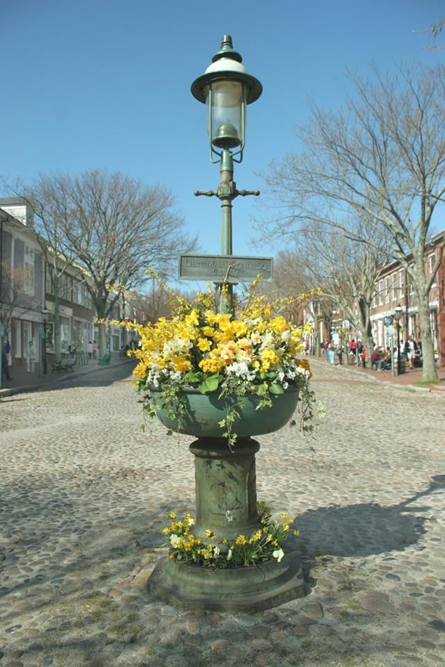 Nantucket daffodil weekend explore nantucket pinterest for Call girls cape cod