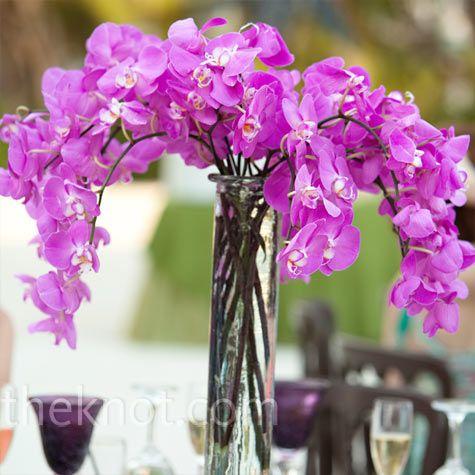 Gorgeous purple orchid centerpiece.