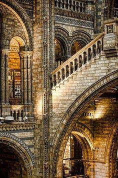 Natural History Museum - London, England