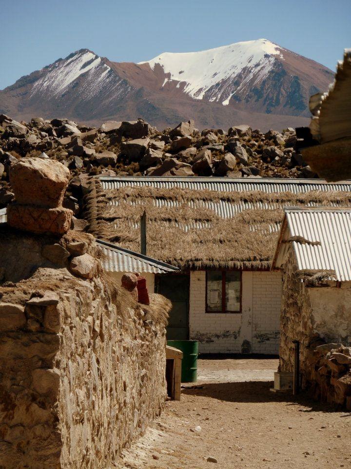 Parinacota (aprox 4500m) a small Chilean hamlet (caserío) in Putre, Parinacota Province, Arica and Parinacota Region.  ©Paula Veselovschi