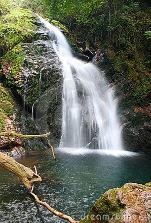 Xorroxin waterfall (Baztan Valley, Navarra, Spain) by Marlee, via Dreamstime
