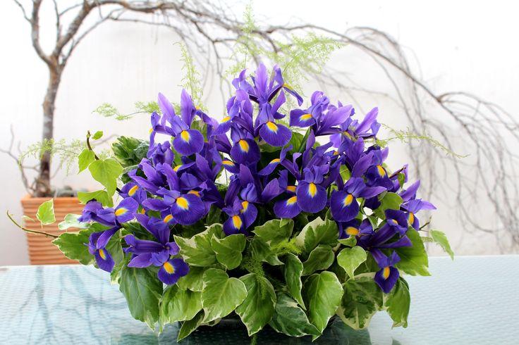 Arreglo floral con iris.