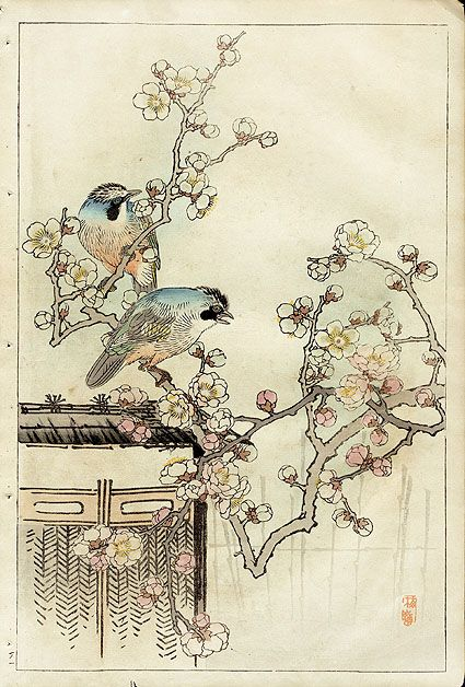 Chinoiserie print - Bairei Flower and Bird Prints 1899