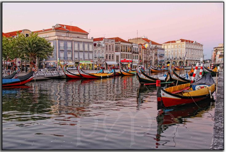 AVEIRO - PORTUGAL | Flickr – Compartilhamento de fotos!