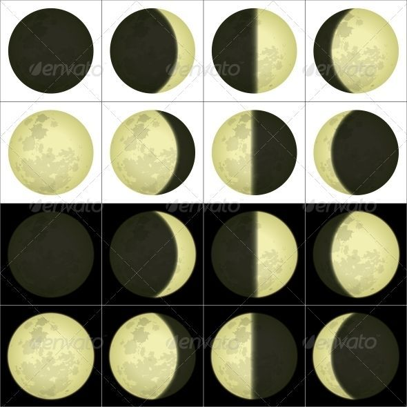 Space Illustration Of Main Lunar Phases On Black And White