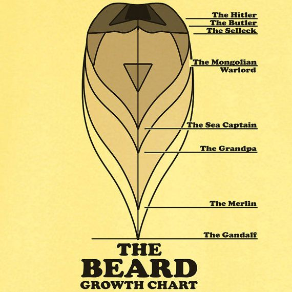 How To Avoid The Awkward Ses Of Beard Growth 1 Grow It