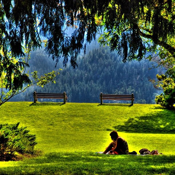 Lakeside Park in Nelson, BC