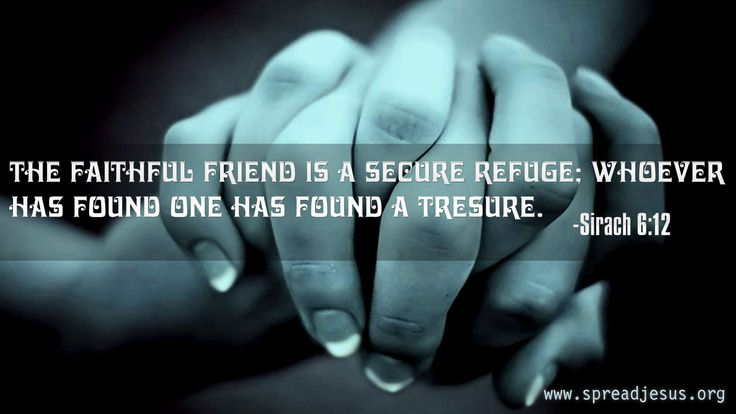 The faithful friend is a secure refuge;whoever has found one has found a tresure.Sirach 6:12