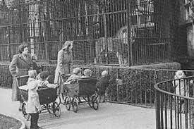 Resultado de imagen para victorian circus and zoo