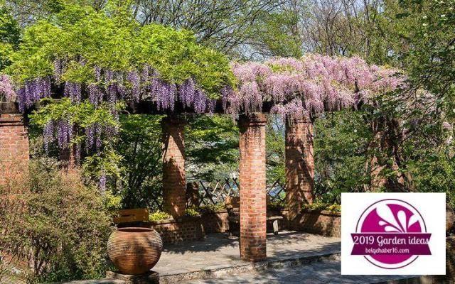 Ideas for designing a Mediterranean garden:separator:Ideas for designing a Mediterranean garden