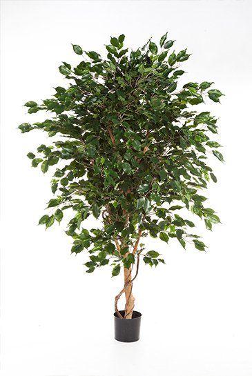 Kunstboom Ficus Exotica
