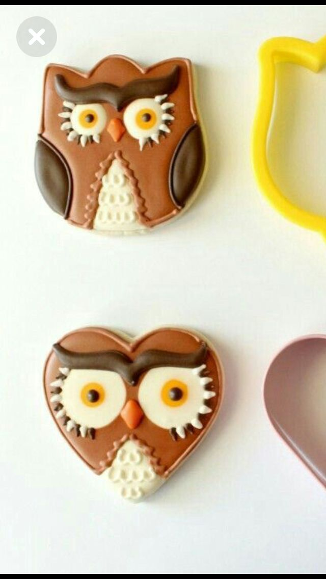 Tulip & Heart shaped Owl Cookies
