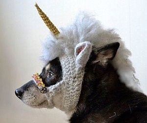 Crocheted Unicorn Dog Mask