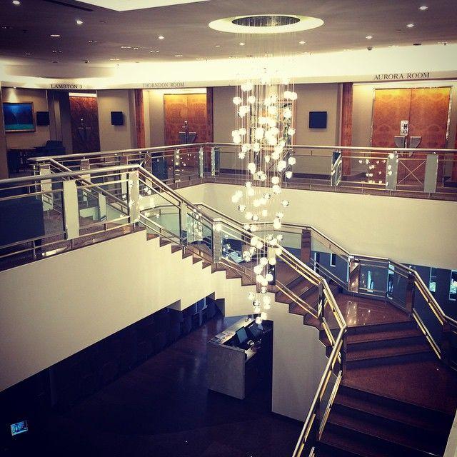 "From @flynnjmiller - ""#chandelier #amazing #art #workofart #sculpture #intercontinental #wellington #hotel #lobby #flightattendant #cabincrew #layover #architecture #design #brilliant #instabeautiful"""