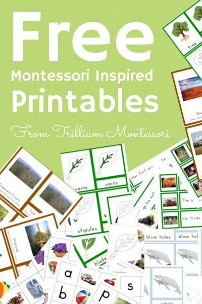 30+ free Montessori printables. 3-Part Cards, Life Cycles, Monthly curriculum guides, phonics, geography... there is a ton of stuff here.