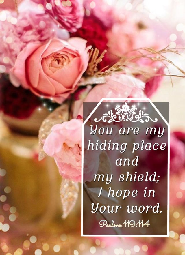 Good morning/afternoon dear friend! I pray the Lord will perfect that which concerns you, for His Mercy endures forever. In Jesus Name. Amen. Have a blessed day today. :-} With my love and hugs. Noni. xoxo