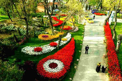 #Фестиваль_тюльпанов в #Стамбул'е