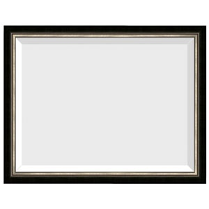 Mary Mayo design diploma 27 inch brushed nickel mirror - also comes bigger size  $150