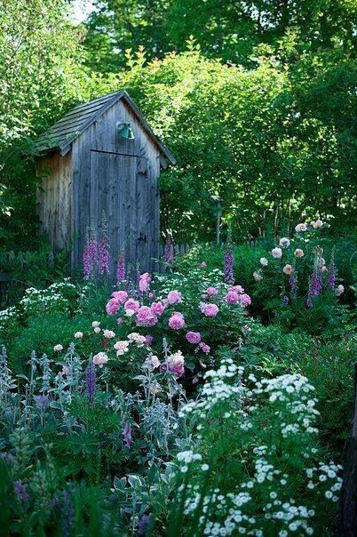 Flower garden and old outhouse...