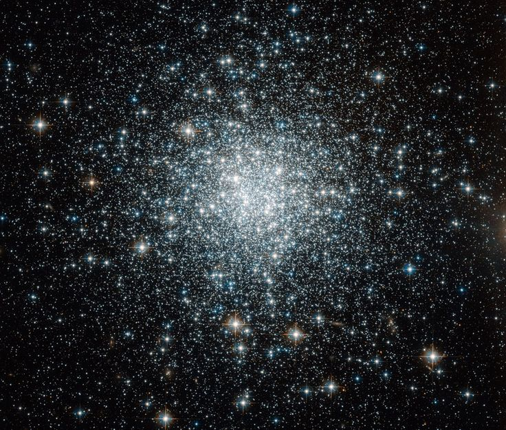 Oct 2010 Globular Star Cluster NGC 6934 Credit: NASA, ESA, Hubble Space Telescope Globular star clusters roam the halo of r Milky Way Galaxy. Gravitationally bound, these spherical groupings of typically several 100,000 stars r ancient, older than the stars of the galactic disk. In fact, measurements of globular cluster ages constrain the age of the Universe (it must be older than the stars in it!) & accurate cluster distance determinations provide a rung on the astronomical distance ladder.