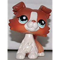 Collie #1542 (COPPER & WHITE COLLIE DOG RED Blue EYES) Littlest Pet Shop (Retired) Collector Toy - LPS Collectible Replacement Single Figure - Loose (OOP Out of Package & Print)