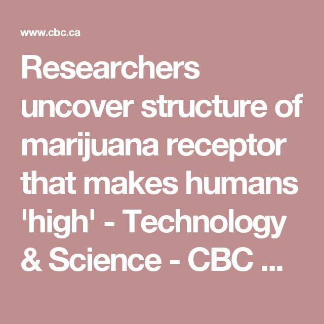 Researchers uncover structure of marijuana receptor that makes humans 'high'