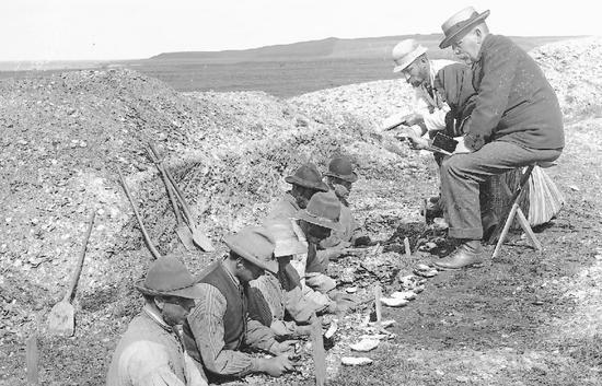 Ertebølle kitchen midden during excavation in 1895