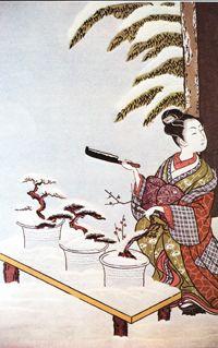 Bonsai History_0001 200