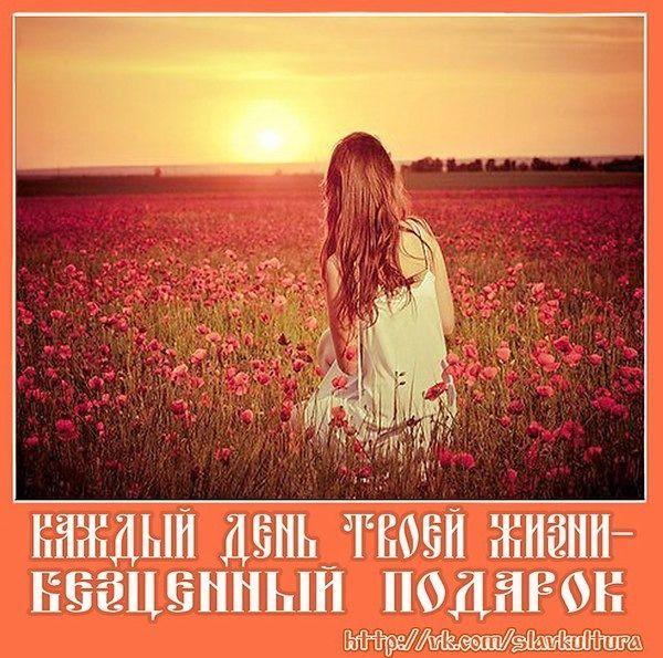 2364604543.jpg — Яндекс.Диск
