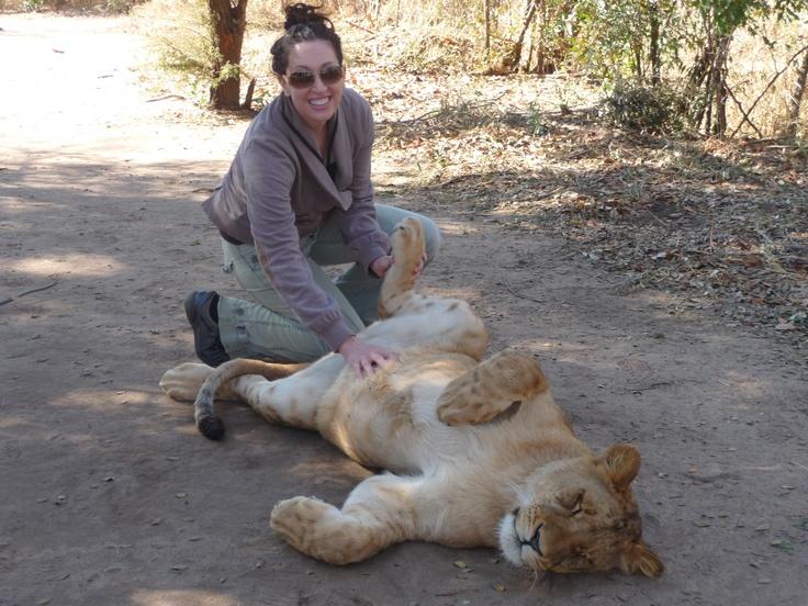 Rachel & Lioness