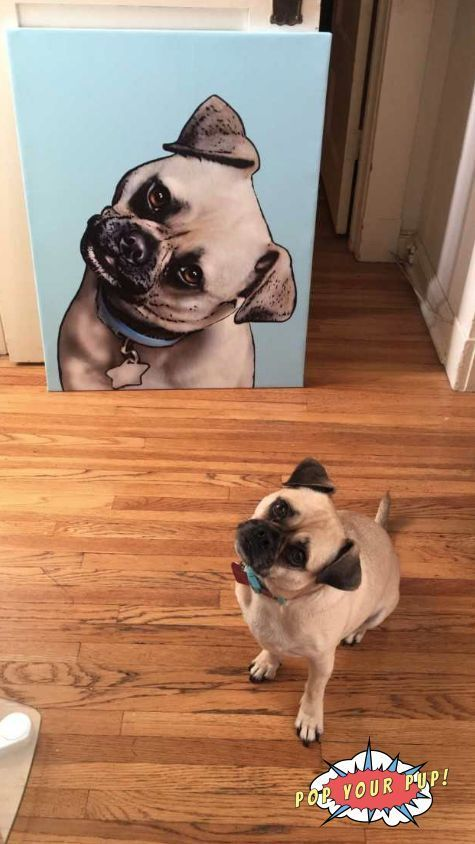 Looking for the best pug gifts? Our custom artwork is the coolest piece of home decor! If you're a pug owner who LOVES their dog, or just need cute pug gift ...