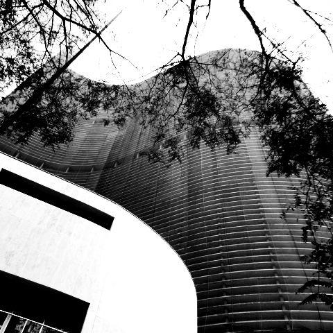 São Paulo segundo as curvas de Niemeyer. Edifício Copan