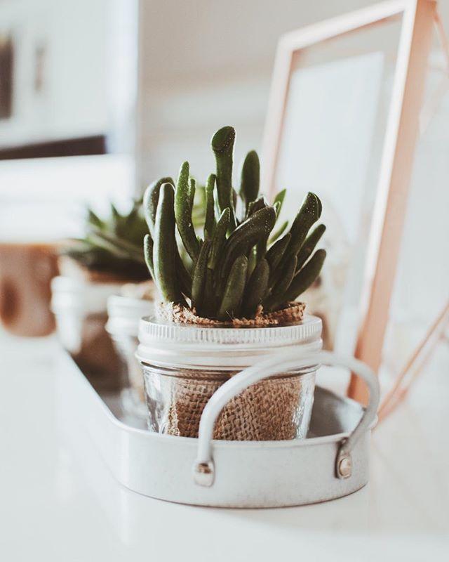 Best 25+ Va office ideas on Pinterest Wood room ideas, Kitchen - costco careers