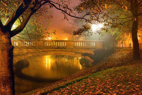 Autumn Fog, West-Vlaanderen, Belgium  photo via secrets: Westvlaanderen, Night Mists, Autumn Mists, Favorite Places, Beautiful Places, Amazing Places, West Vlaanderen, Bridges, Autumn Fog