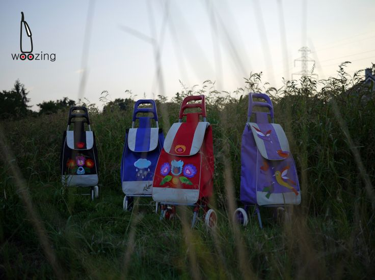 Handmade Polish folk shopping trolleys - Woozing