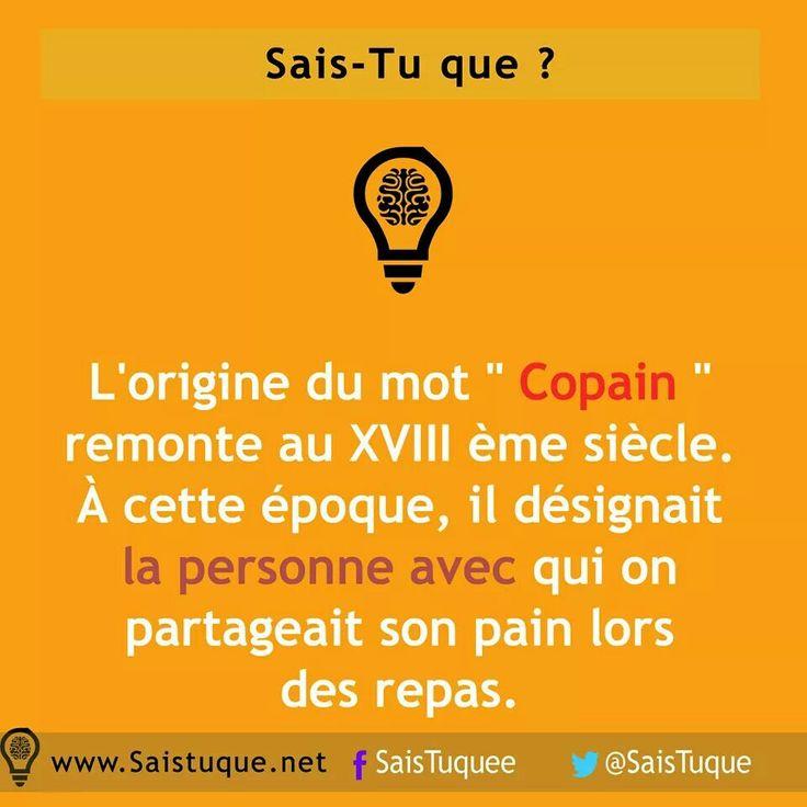 Copain