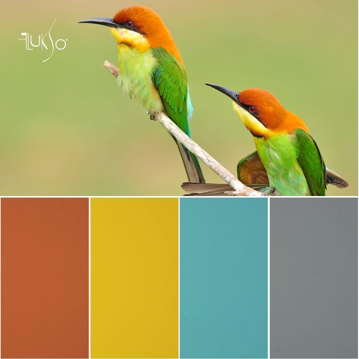 Flukso Color Palette