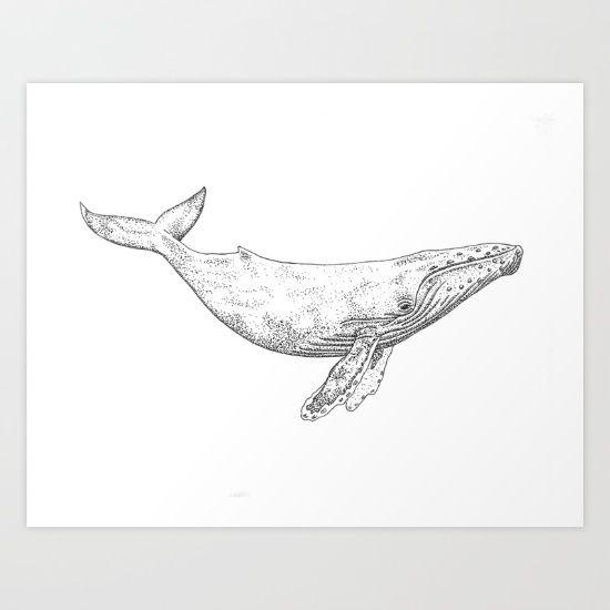 Humpback Whale Art Print by Alexa Roberts - $32.24