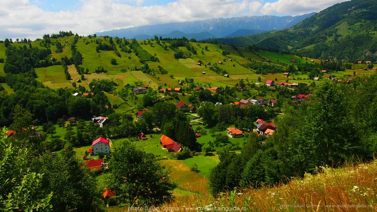 Beautiful walking tour in Romania, spring flower tours