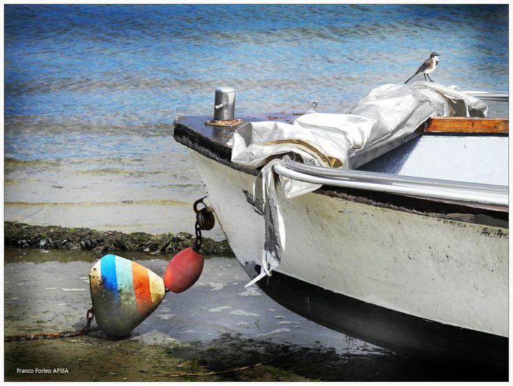 Anchored Boat, Knysna