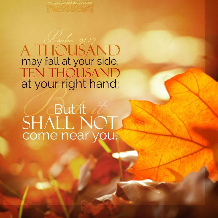 A thousand may fall at your side; ten thousand at your right hand, but it shall not come near you. Psa 91:7 <3