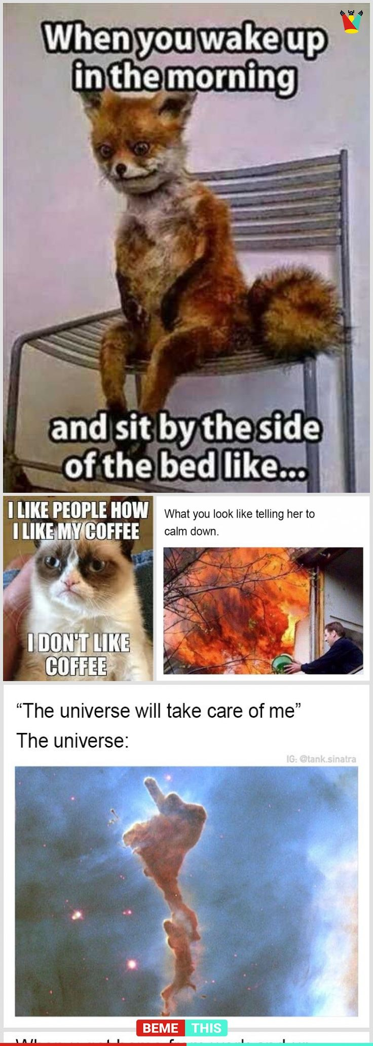 Presenting 20 Hysterical Memes To Brighten Your Day Funnymemes Humour Memes Funny Epic Jokes Memes Funny Memes Brighten Your Day