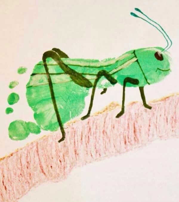 12 best cricket grasshopper insect preschool ideas for The cricket arts and crafts