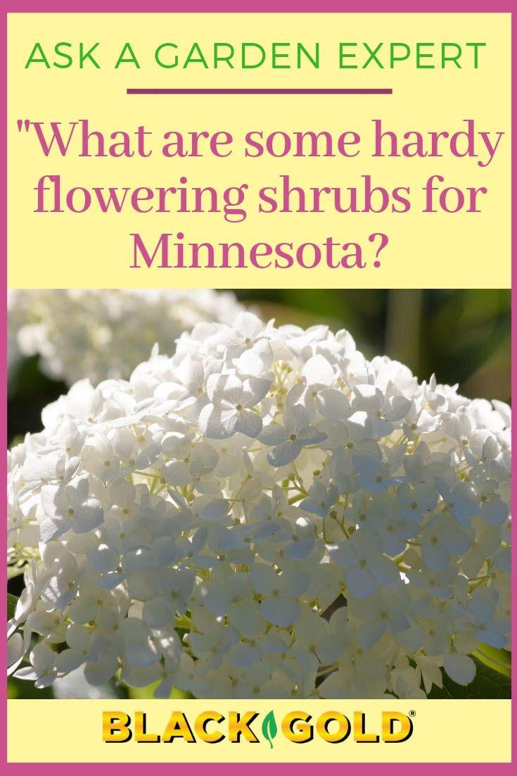 64d29ab11509cd32a5c0a664bb1ab8e5 - What Gardening Zone Is Minnesota In