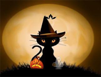halloween cats black cat halloween screensaver features