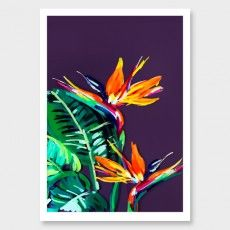 Birds of Paradise Art Print by Jen Sievers